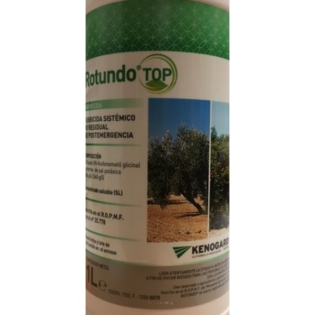 ROTUNDO TOP
