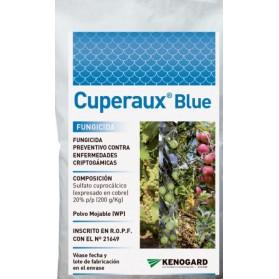 CUPERAUX BLUE