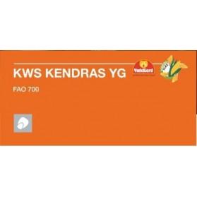 KENDRAS YG